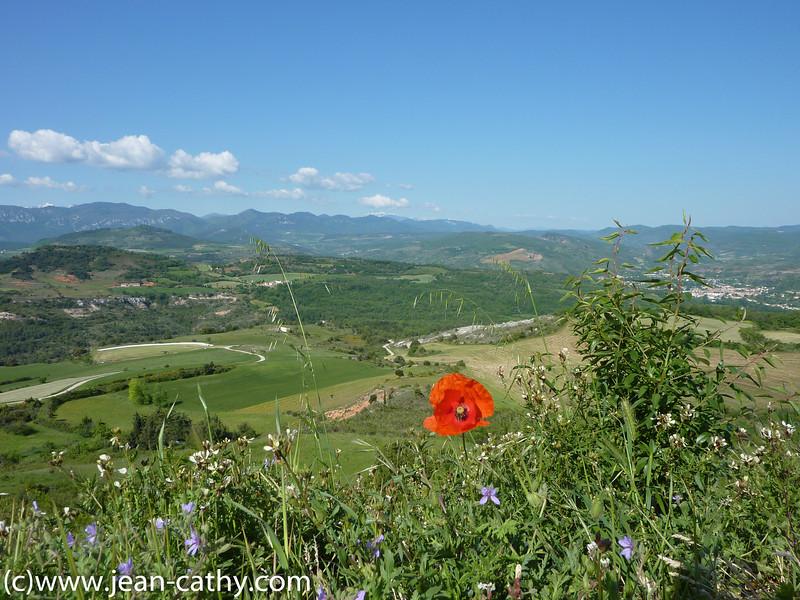 Languedoc Rousillon 2010 -  (47 of 65)