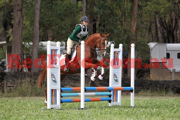 2010 06 19 Log Fence ODE Showjumping D Grade