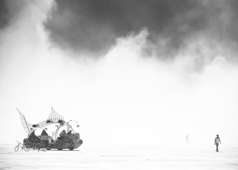 Not easy being a fish on the playa, but this on loves it.       BURNING MAN 2010 by NADAV HAVAKOOK www.nadavhavakook.com