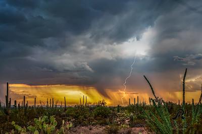 Monsoon Weather