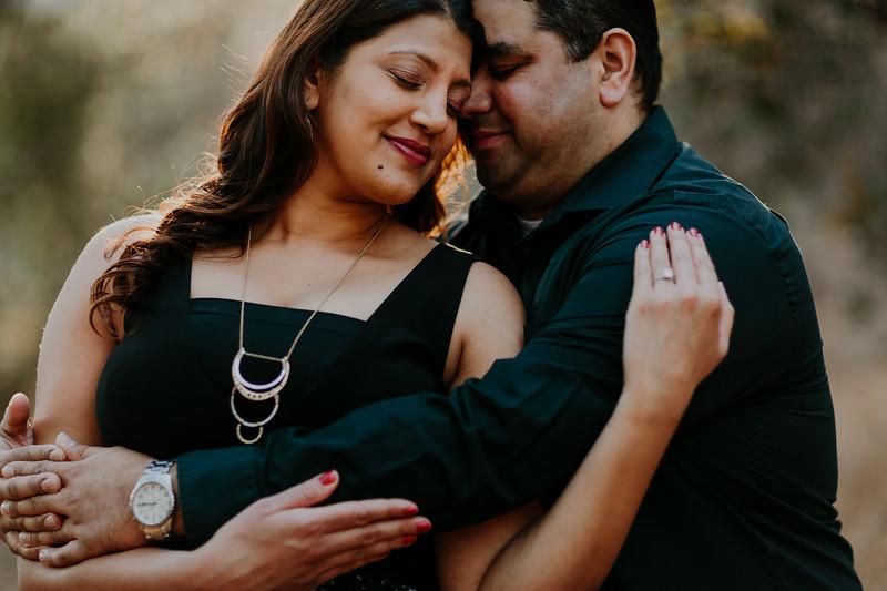 Swapna and Atul Engagement-35.jpg