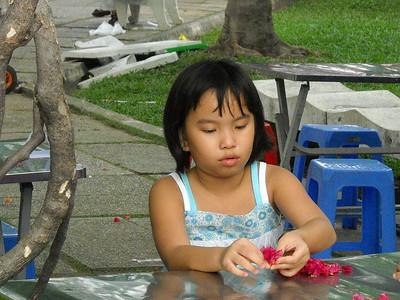 Saigon - festival inthe park