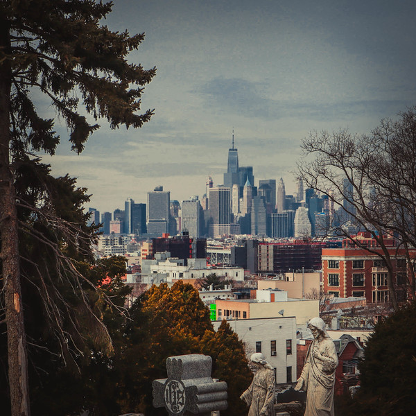 64 (3-13-19) A Plot with a View -NYC from Greenwood.jpg