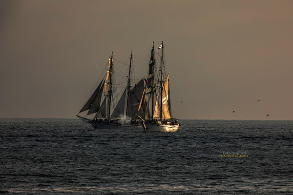 Tall Ships at Dana Point - 9/7-9/18