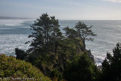 Newport, OR and Oregon Coast - March 1-3, 2021