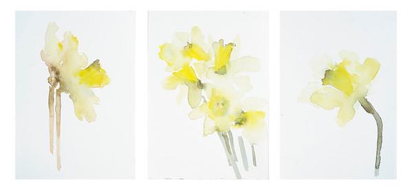 """Trio of Daffodils"" (watercolor) by Vega Davis"