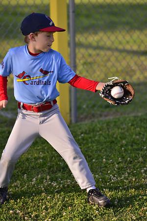 Cardinals 4-30-2013