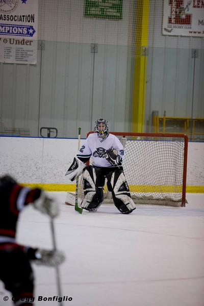 Jaguars Hockey-180.jpg