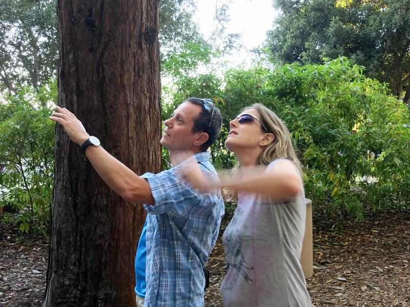 Yuval and Shani examine Totem