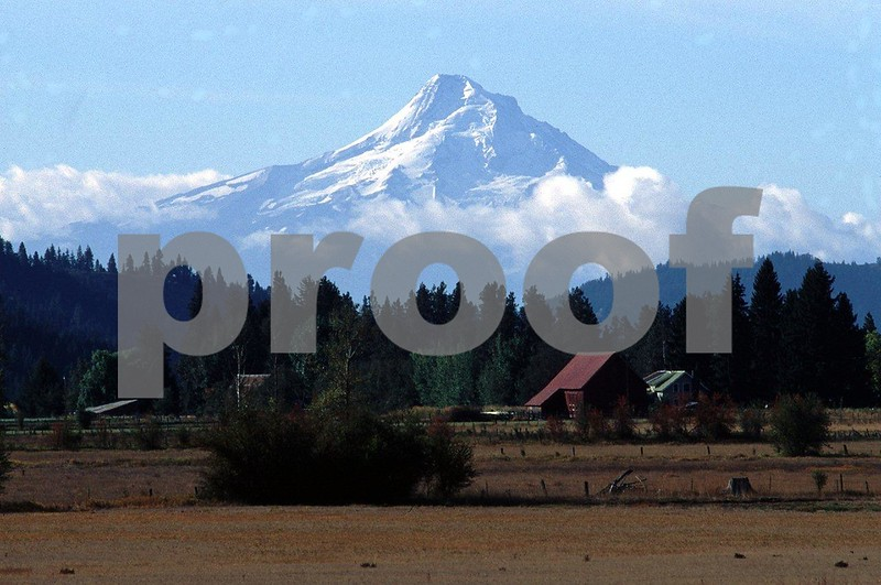 Mt. Hood from Trout Lake.jpg