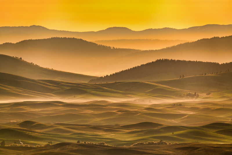 Morning Mist in the Palouse