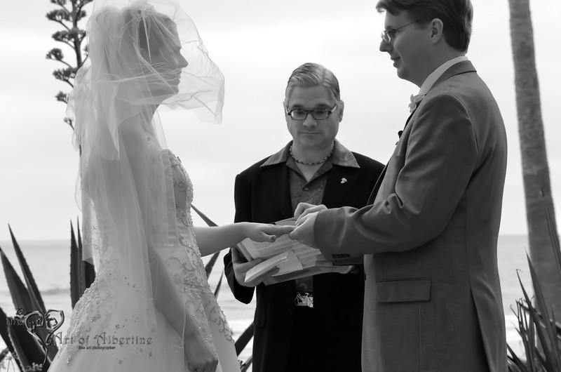 Laura & Sean Wedding-2371.jpg