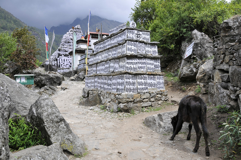 080516 2547 Nepal - Everest Region - 7 days 120 kms trek to 5000 meters _E _I ~R ~L.JPG