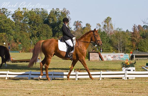 2010 Horse Trials