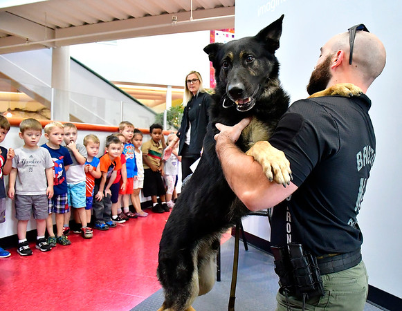 7/25/2019 Mike Orazzi | Staff Bristol Police Officer Conor Hogan with Bronn Dog Days of Summer program held at the Imagine Nation, A Museum Early Learning Center in Bristol Thursday morning.