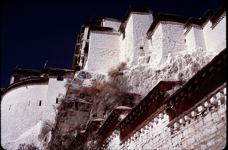 Tibet_Shanghai1_037.jpg