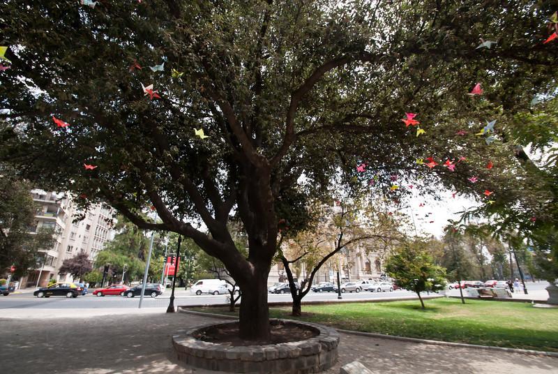 Santiago 201201 (98).jpg