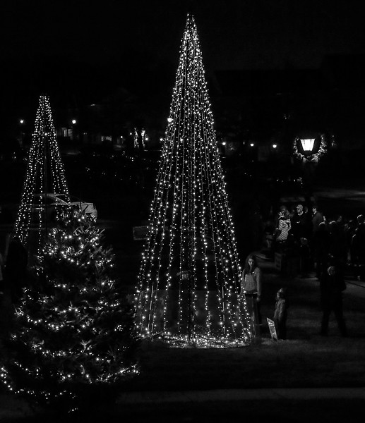2014 Dec - Harrisburg Christmas Tree Lighting-0128.jpg