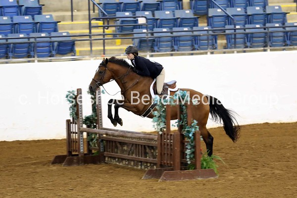 House Mountain Summer Horse Show - Day 2 - Coliseum
