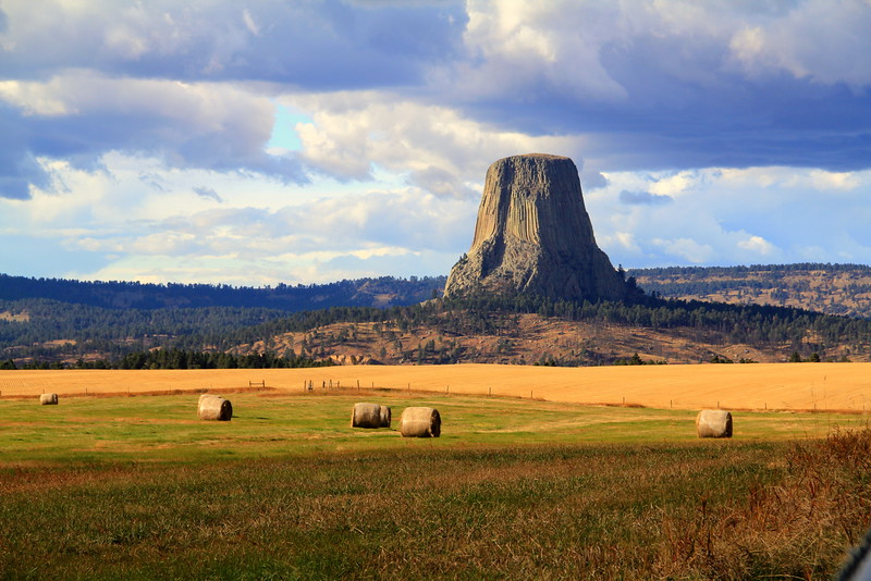 Devils Tower Hayfield.jpg