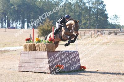 150208 USEA Horse Trial
