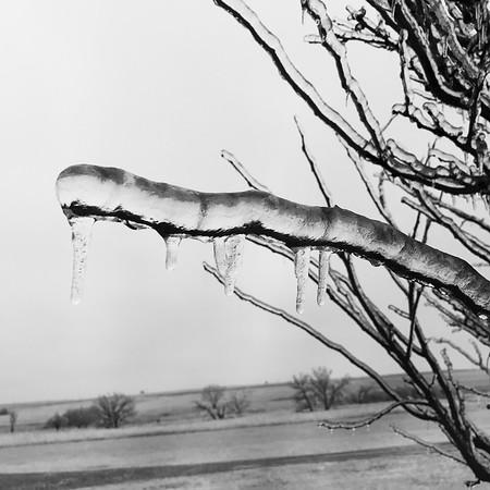2017-01-16 Ice Storm