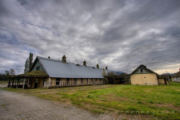 10.05.08 - Asylum Farm