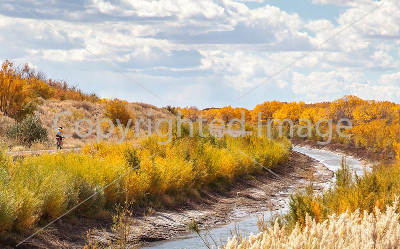 New Mexico - Cyclist at Bosque del Apache Nat'l Wildlife Refuge - biking