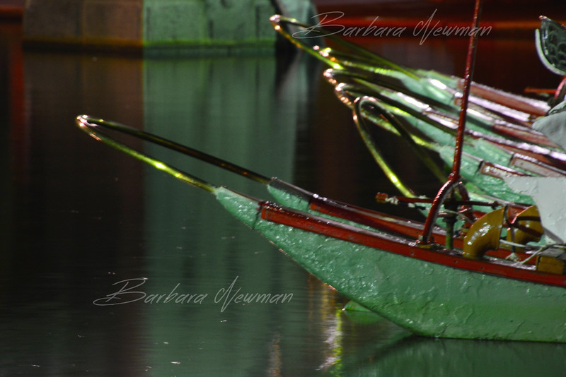 SwanBoattips1aWtrmk.jpg