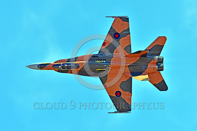 F-18 Hornet Easter Egg Colorful Military Airplane Pictures-Non-US