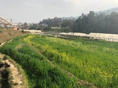 2018 - Nepal - Nagarjun Ramkot