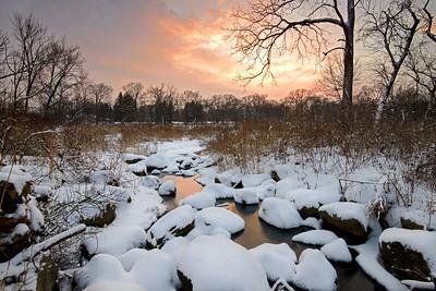 Warrenville Grove Forest Preserve