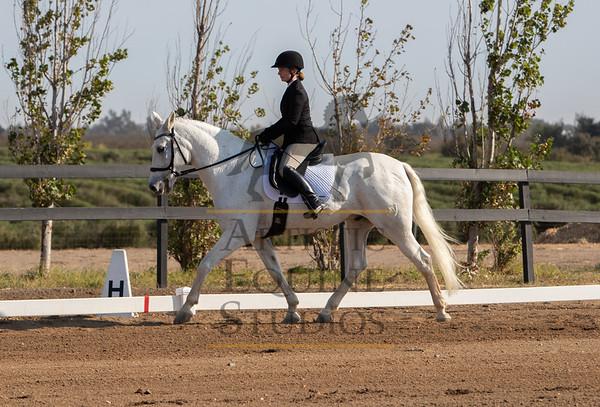 Rider 213