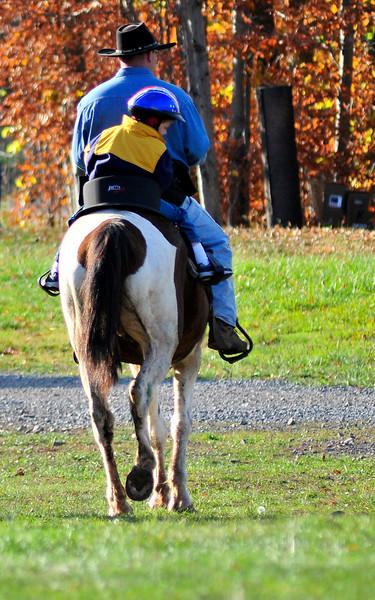 WV Horses