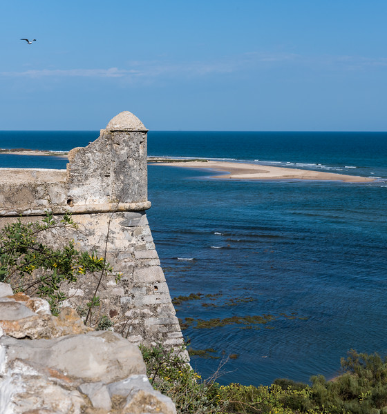 Faro 108.jpg