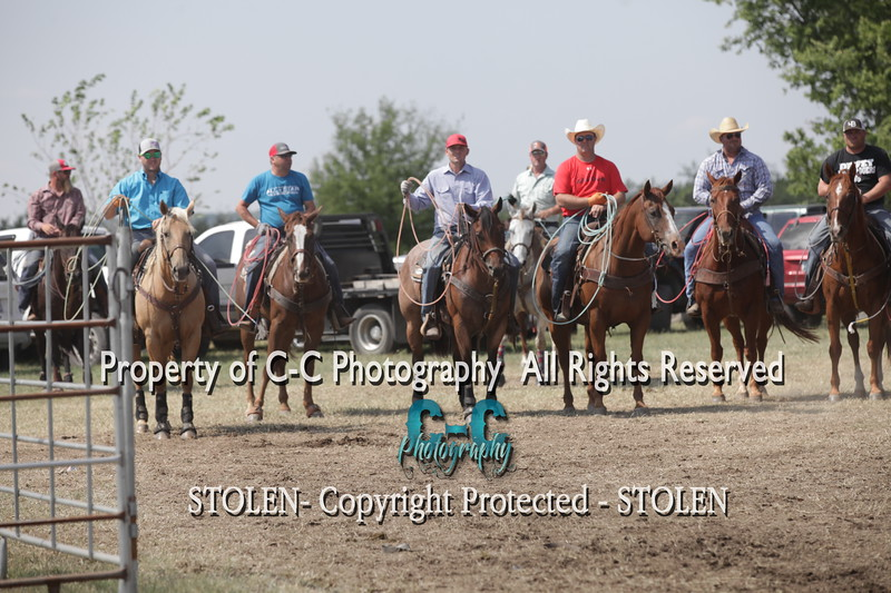 Lazy 105 16 Open Pasture  Roping
