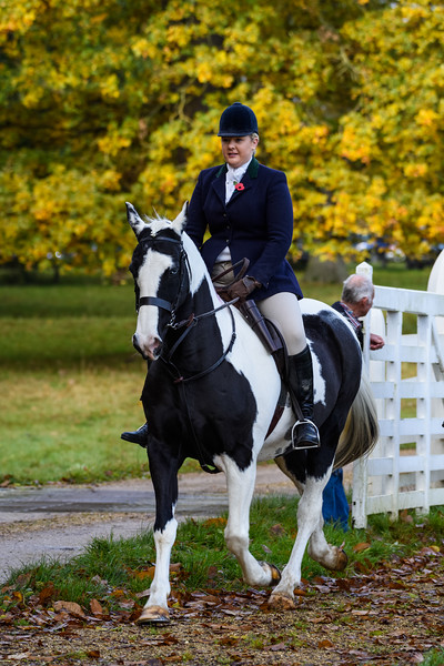 Fitzwilliam Opening meet Nov 2019-159-97.jpg