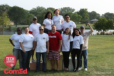 ComEd Tech Services Picnic 2017