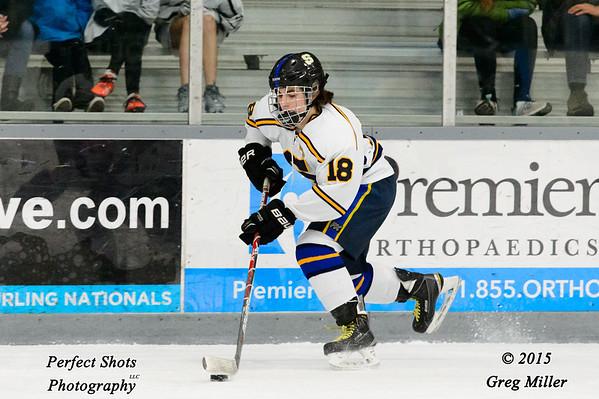 Ice Hockey ----- ( 2016 - 2017 )