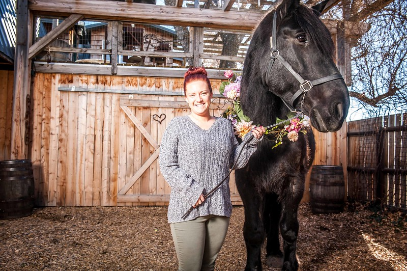 barbwire and lace horse photo shoot Low Resolution-11.jpg