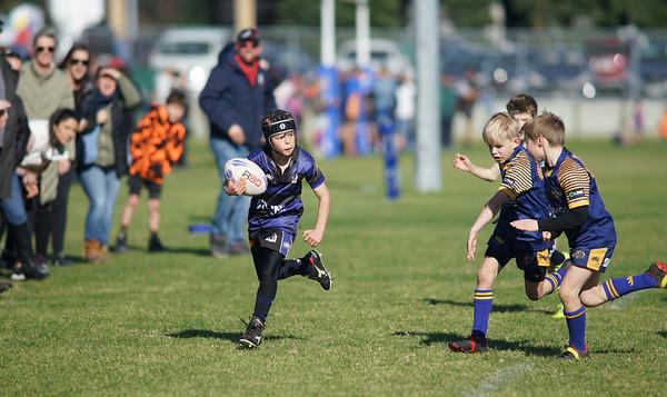 Tauranga Rugby