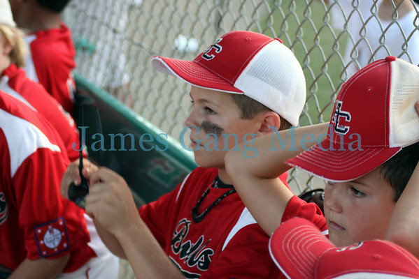 Hall Co. 8yo All Stars - State Tournament Pic Group 2