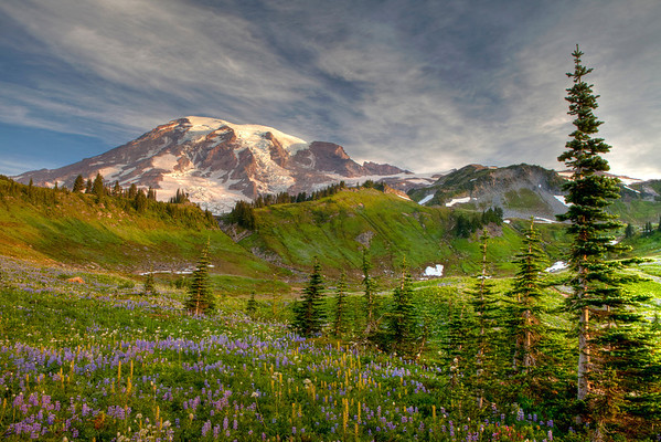 Mt. Rainier Sept 2011