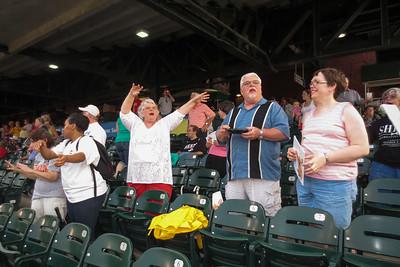 Bats Baseball 2013