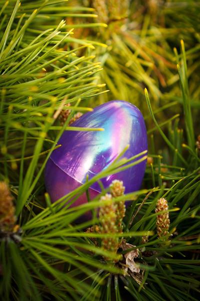 Harmony Easter Egg Hunt 4-1-12 (7 of 47).jpg