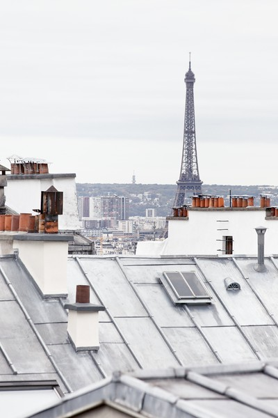 Eiffel Tower and Rooftops