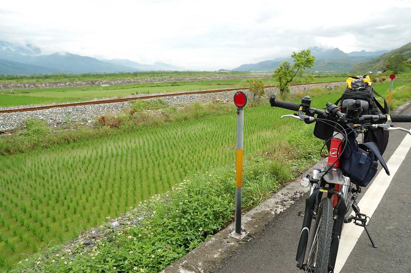 這段的花東縱谷,公路鐵路大致平行,伴著兩旁的稻田與遠方的山谷,風景十分優美