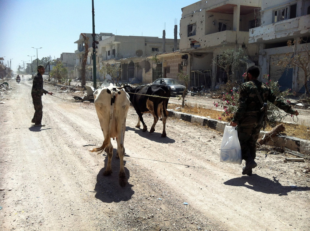 . A picture taken on June 6, 2013 shows Syrian army soldiers walking with cows in a street in Qusayr in the central Homs province. Syrian soldiers bombarded a village where rebels and civilians fled to after being routed the previous day from the strategic border town of Qusayr, the Syrian Observatory for Human Rights said. AFP PHOTO/STR-/AFP/Getty Images