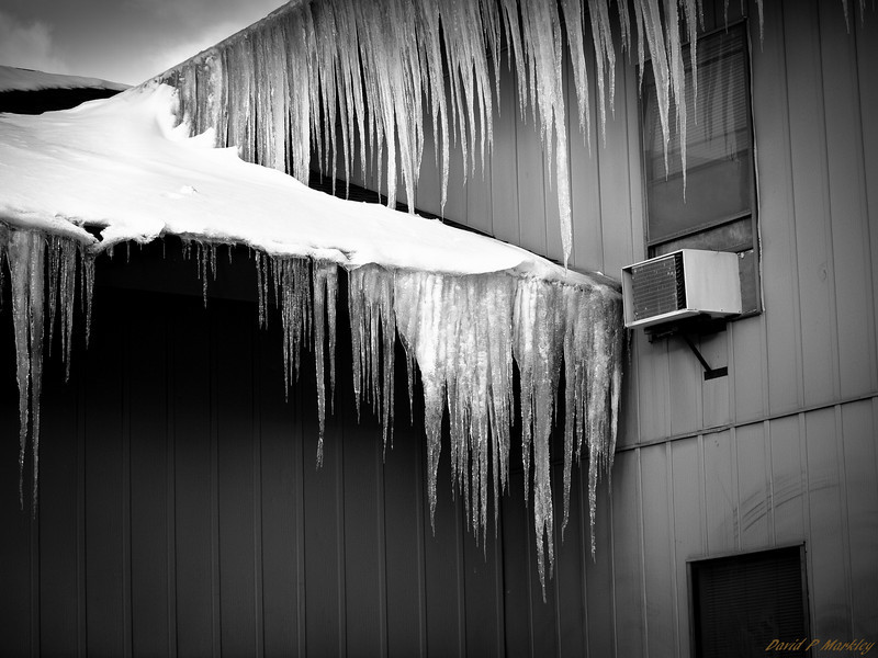 White Icicles