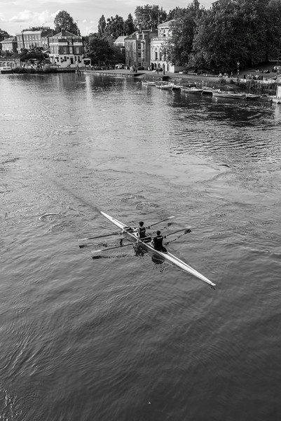 Rowing on the Thames.